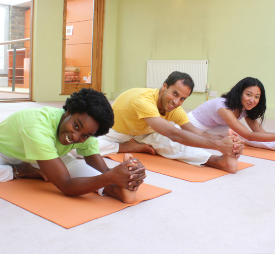 """<div style=""""line-height: 1.3; color: #ce402d; font-family: catamaran; """">Online Course: Beginners Yoga Level 1 & Level 2</br> </div>"""